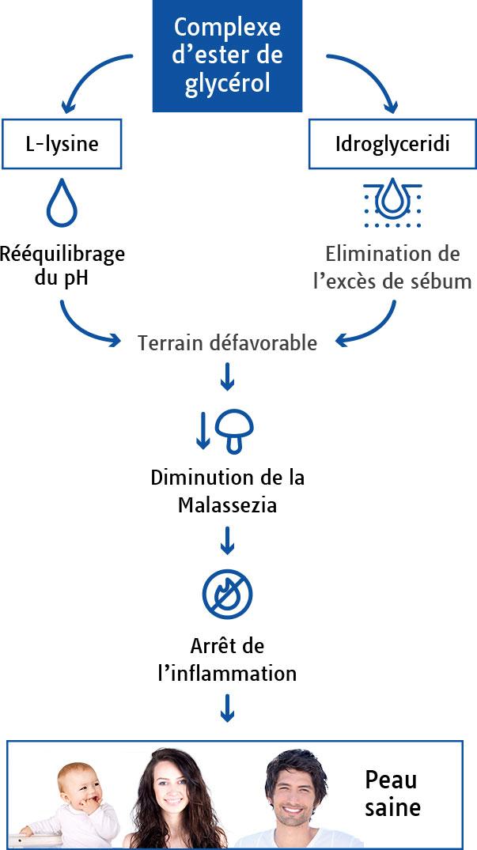 Complexe d'esters de glycérol Liperol